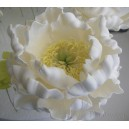 13th May - Wired Sugar Peonie Flower